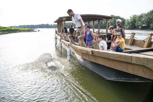 Balades en bateau sur la Loire